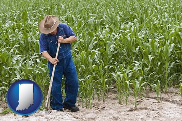 a farmer growing corn in a cornfield - with Indiana icon